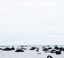 Swan sea by EmElJay