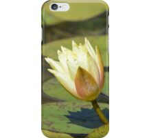 Water Lily (Yellow) iPhone Case/Skin