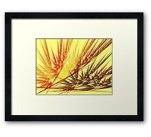 Red Wheat Framed Print