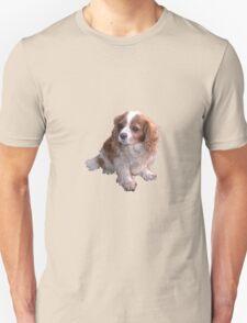 Cute King Charles Spaniel Unisex T-Shirt