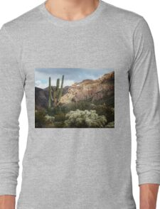Arch in the Canyon Long Sleeve T-Shirt