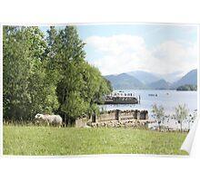 Derwentwater Sheep 2 Poster