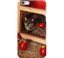 Cat in a Barn iPhone Case/Skin