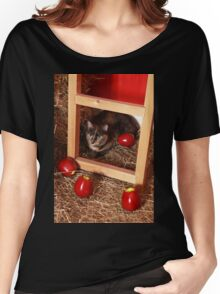 Cat in a Barn Women's Relaxed Fit T-Shirt