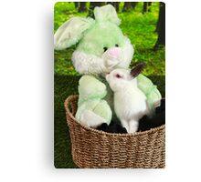 Rabbit kissing Bunny Canvas Print