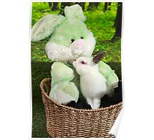 Rabbit kissing Bunny Poster