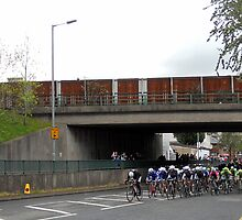 cyclists peloton by Kevin McLaughlin