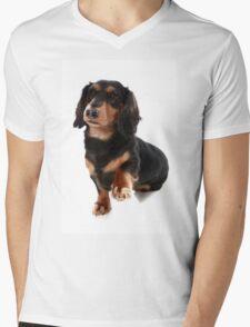 Dog showing Paw Mens V-Neck T-Shirt