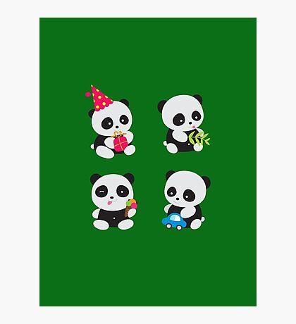 Cute Pandas  Photographic Print