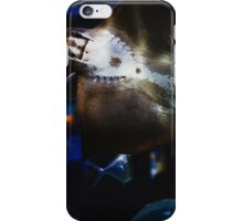 Bottom Of A Ray Fish iPhone Case/Skin