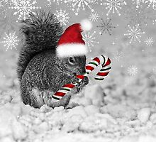 Squirrel in the Snow - Christmas by Doreen Erhardt
