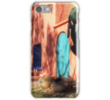 Colors Of The Desert Southwest iPhone Case/Skin
