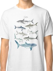 Sharks - Landscape Format Classic T-Shirt