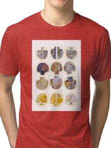 Multifaceted No.4, Stones and Roses (Light, Time & Facade Series) Tri-blend T-Shirt