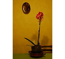Flowers on the Table Photographic Print