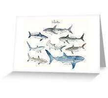 Sharks - Landscape Format Greeting Card