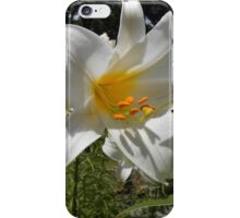Easter Lilies iPhone Case/Skin