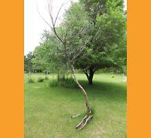 The Tree Looks Sad            Pentax Digital Camera (X-5) Series Unisex T-Shirt