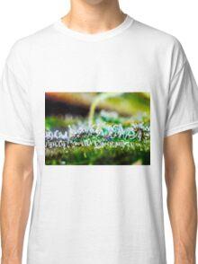 Macro Trichomes Classic T-Shirt