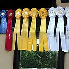 Winning Ways Horse Show Ribbons by Oldetimemercan