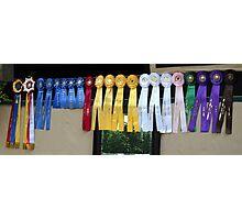 Winning Ways Horse Show Ribbons Photographic Print