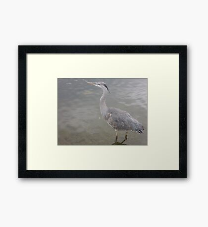 Into the Presence of Still Water Framed Print