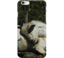 Sleeping Goat iPhone Case/Skin