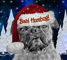 Bah Humbug Pug Dog - Card by Doreen Erhardt