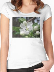 Apple Blossom Beauty Women's Fitted Scoop T-Shirt