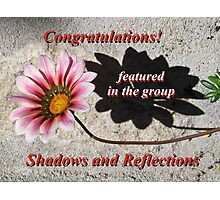 Banner - Shadows and Reflections Feature Challenge Photographic Print