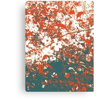 Cherry Canvas Print