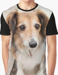 Big Puppy Eyes Graphic T-Shirt