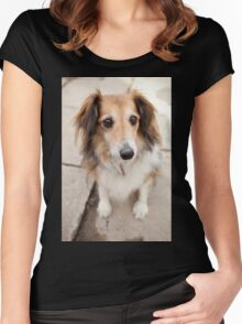 Big Puppy Eyes Women's Fitted Scoop T-Shirt