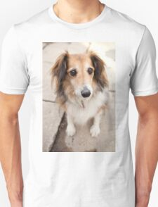 Big Puppy Eyes Unisex T-Shirt