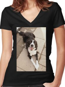 Dog relaxing on Sunny Day Women's Fitted V-Neck T-Shirt