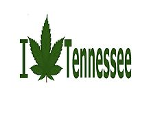 I Love Tennessee by Ganjastan