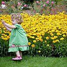 Perfectly Springtime by Michael J Armijo
