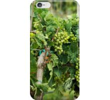 Fruit on the Vine iPhone Case/Skin