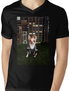 Boxing Dog Mens V-Neck T-Shirt