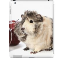 Guinea Pig Love Apples iPad Case/Skin