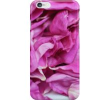the ragged petals rose iPhone Case/Skin