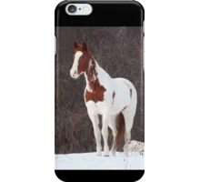 1Apache in the Snow iPhone Case/Skin