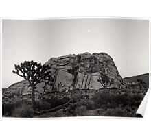 Joshua Tree and The Rock Poster