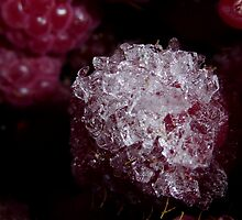 Frozen raspberry by Perggals© - Stacey Turner