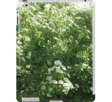 Tree With Blossoms Pentax Digital Camera 16 Mps iPad Case/Skin