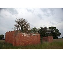 Nature Taking Over, Derelict Building. Photographic Print