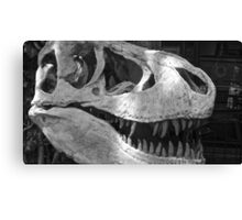 Bone Smile Canvas Print