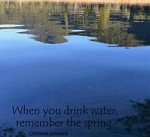 When you drink water, remember the spring. Chinese proverb by MHen