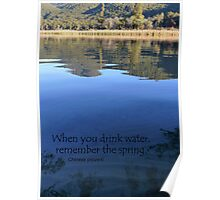 When you drink water, remember the spring. Chinese proverb Poster