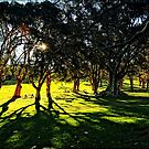 At Centennial Park by andreisky